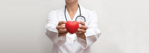 Medical professional holding heart
